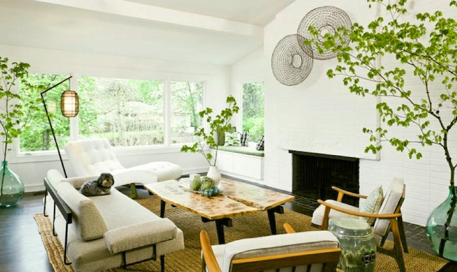 Plants Living Room Decor