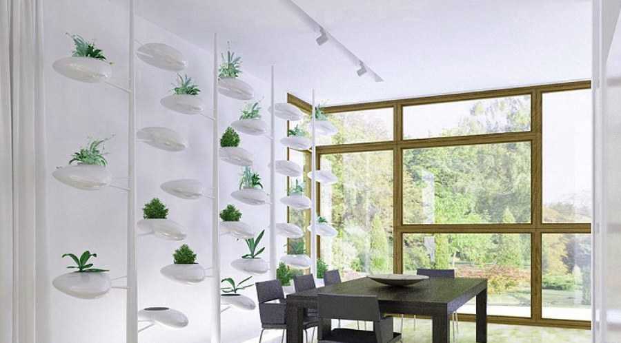 Wall Decor with Little Plant Pods