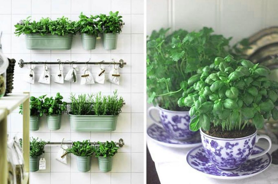 Decor with Plant Cups