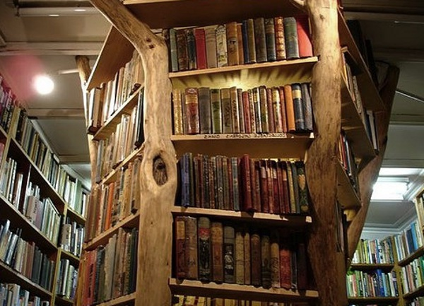 Tree Trunk Bookshelf
