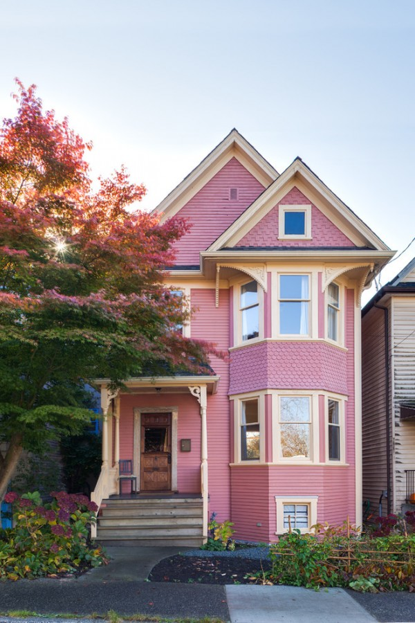 Small Pink Traditional House