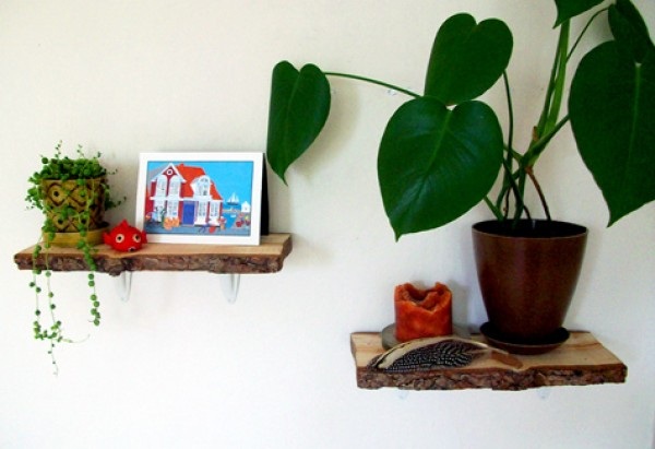 Log Shelves