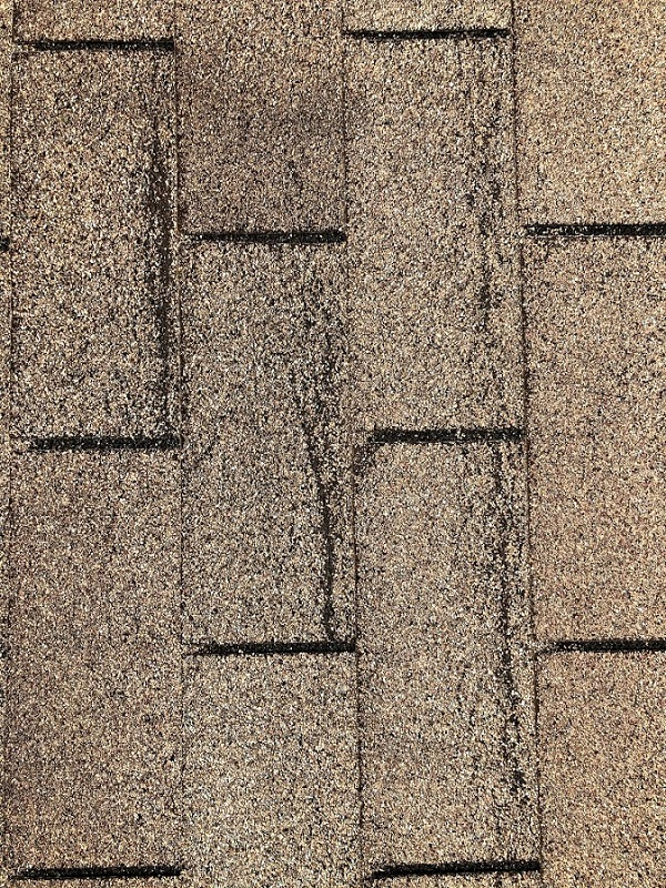 shingle creases