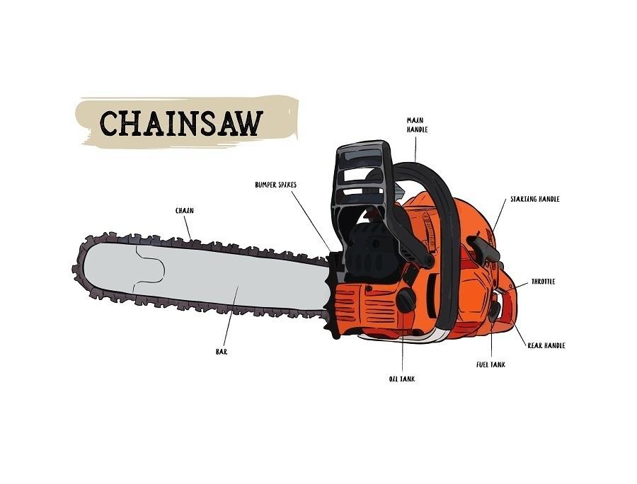 chainsaw diagram