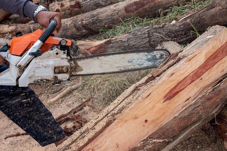 chainsaw guidebar