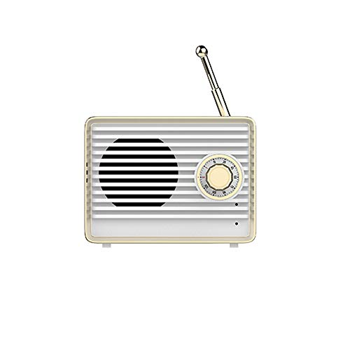 Dosmix Portable Bluetooth Vintage Speaker with Built-in Mic