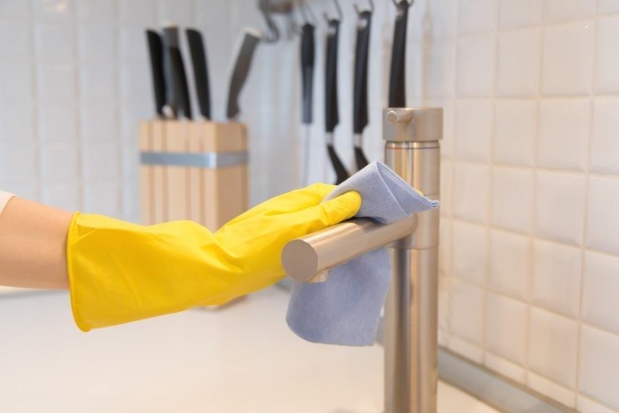 brushed nickel kitchen faucet