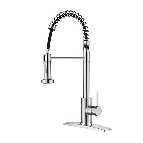Forious Kitchen Faucet With Pull Down Sprayer,